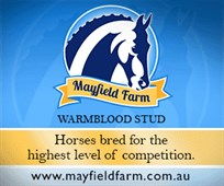Mayfield Farm Medium