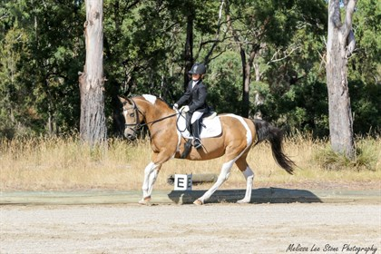 Tassie Dressage Champs - © Melissa Lee Stone Photography