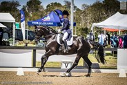 Natasha Moody and Diamonte Noir showing grace and style in the FEI Junior Team Test 14-18 years.