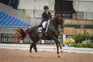 Alexis Hellyer and Bluefields Floreno scored 67.360% in the Grand Prix - © Michelle Terlato