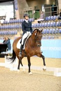 Alycia Targa and CP Dresden finished second in the Grand Prix Special on 66.23% - © Roger Fitzhardinge