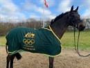 Andrew Hoy's 2012 London Olympics rug is up for auction.