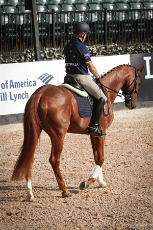 Andrew Hoy's horse, Vassily de Lassos, was sporting the Aussie Flag on his rump - © Michelle Terlato