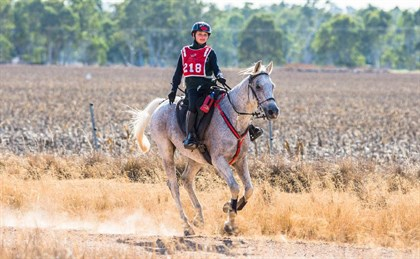 Equestrian Life - Young and old saddle up for Tom Quilty
