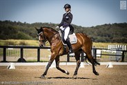 Tanisha Ryan and Quizzical from NSW strutting their stuff in the FEI YR Team Test 16-21 years.
