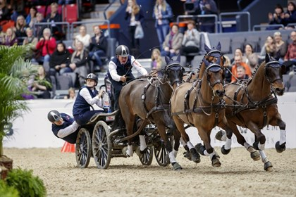 Boyd Exell on his way to his seventh FEI World Cup™ Driving title - Photo FEI / Stefan Lafrentz