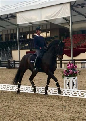 Carl Hester and Hawtins Delicato at CHI Royal Windsor Horse Show - Photo: Charlotte Dujardin CBE Facebook page