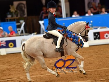 Child's Small Pony - Picturesque Prince & Tiana Schaefer - © Derek O'Leary - Oz Equestrian Photography