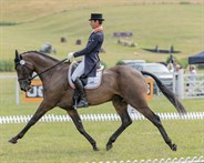 Chris Burton and Cooley Lands in the CIC3* - © William Carey