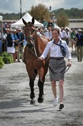 Emma McNab and Fernhill Tabasco in the trot up - © Michelle Terlato