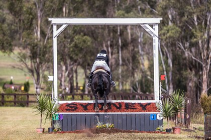 Eventing at Sydney Sydney International Horse Trials © Stephen Mowbray