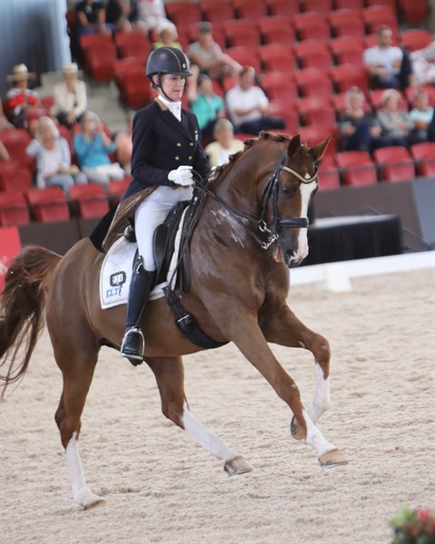 Amicelli Gold and Lesley-Anne Taylor at Willinga Park Dressage by the Sea CDI4* © Roger Firzhardinge