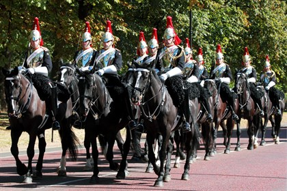 Household Cavalry horses - Labelled for reuse