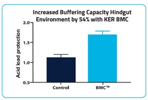 Increased buffering capacity - Figure 2. © KER