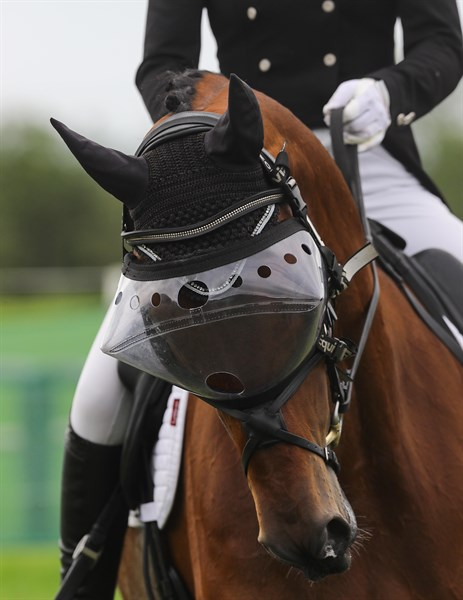 Interesting headgear at Tattersalls in the dressage - © Lorraine O'Sullivan/ Tattersalls International Horse Trials