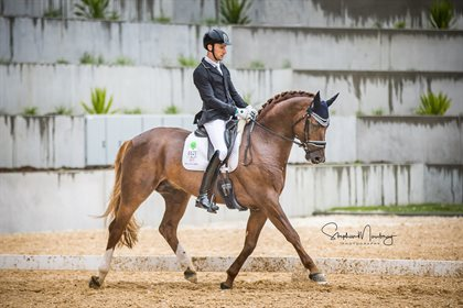 Jayden Brown and  'Willinga Park Fangio' score 80.00% to win the 6yo horse class © Stephen Mowbray