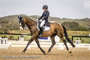 Jessica Hivon and Greenoaks Weltmann looking good in the FEI Junior Individual 14-18 years.