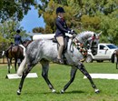 Kaitlin Labahn-Meyland and Rolex II at the 2018 Barastoc HOTY show © Lisa Gordon