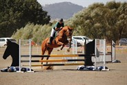 Making the level three course look easy! - © Adele Severs/EQ Life