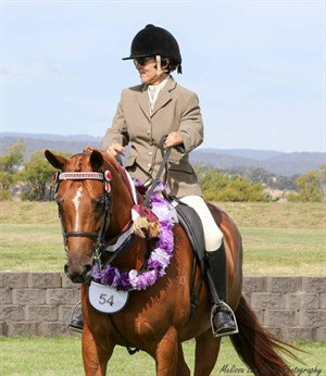 Mandy Parsons and Zhia in the show ring. © Melissa Lee Stone Photography