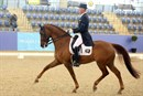 Matthew Dowsley and AEA Prestige scored a huge 72% for 2nd in the Grand Prix - © Roger Fitzhardinge