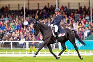 Oliver Townend and Cillnabradden Evo. © Elli Birch/BootsandHooves