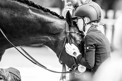 Could training based on positive reinforcement be more effective than 'pressure release' training? © FEI/Lukasz Kowalski