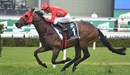 Redzel winning The Everest again (Image: Racing Photos)
