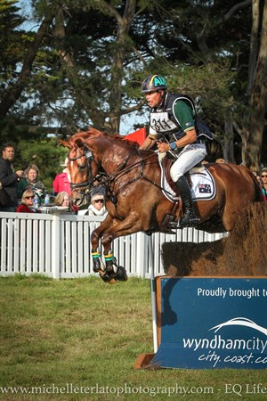 Robert Palm on Koko Story in the CCI3* © Michelle Terlato