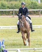 Sam Griffiths and Billy Liffy were the leaders after the dressage in the CIC2* - © William Carey