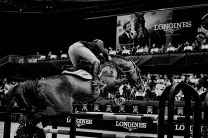 Showjumping - No credit required