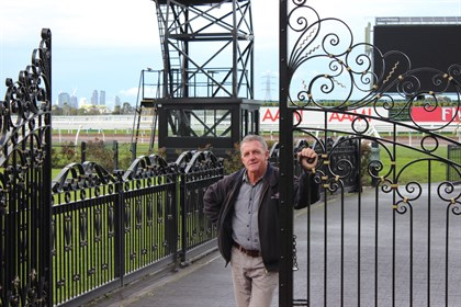 Terry Freeman has been looking after Flemington's roses since he began his apprenticeship in 1976. © Adele Severs