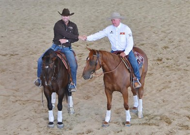 The combination will work with several horses to demonstrate their skills and techniques © Image supplied