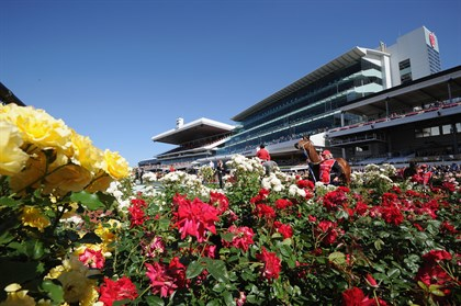 The roses are now a key feature of Flemington's Spring Racing Carnival. © Getty Images