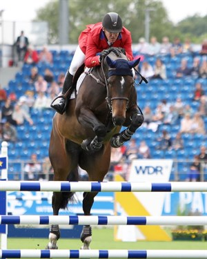 The showjumping began today on the main arena