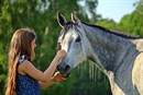 The special relationship between human and horse can be traced back more than sixteen thousand years