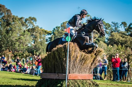 Tim Boland and Napoleon are leading the CCI2* - © Geoff McLean/Gone Riding Media