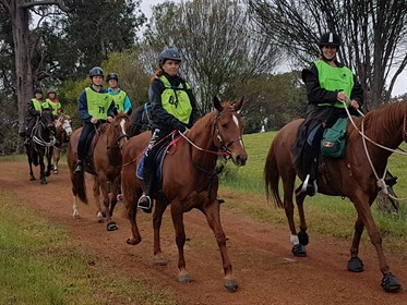 Wine and Horses in Perth Hills' two day ride to Northam supporting Alzheimer's.