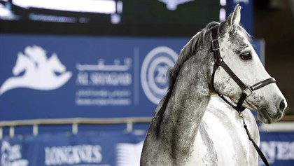 athletes electing to bring their top horses for this week's final © LGCT/Stefano Grasso